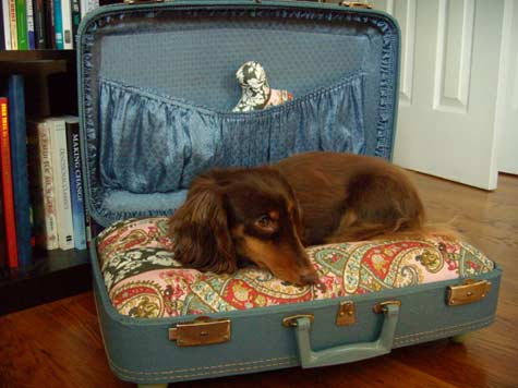 suitcase-dog-bed